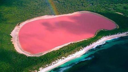 Resultado de imagen para La laguna rosa de México