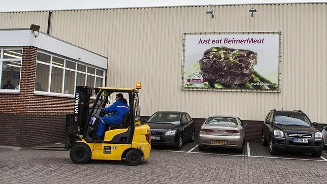 Holanda analiza hamburguesas que podrían estar infectadas por bacteria E.coli