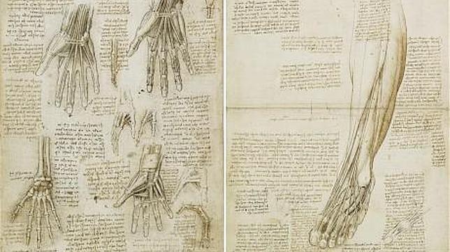 Leonardo da Vinci, la resonancia magnética del Renacimiento