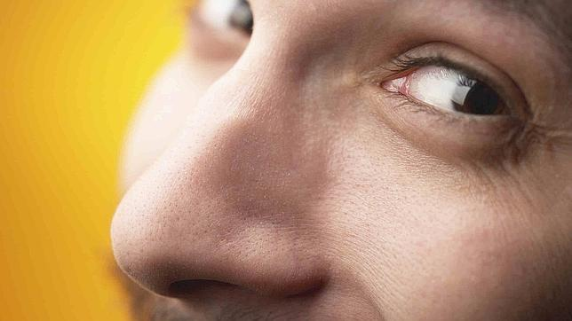 Las narices europeas son más largas y afiladas