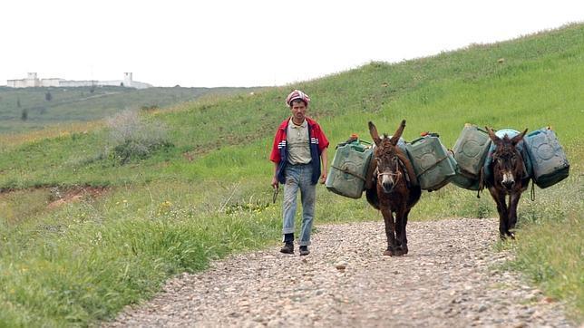 Un marroquí pasa a su país (al fondo un puesto militar argelino) con dos burros cargados de gasolina