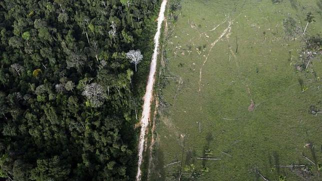 Deforestación en Brasil en el Parque Nacional de Itaituba, en el Estado de Pará