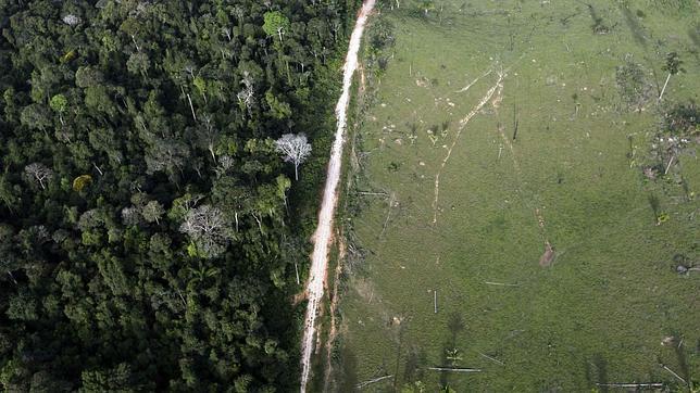 Imagen aerea de deforestación cerca del Parque Nacional de la Amazonia, en Itaituba