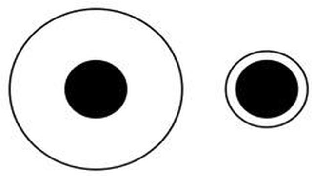 La ilusión óptica que te hará ver el mundo como si fueras un primate