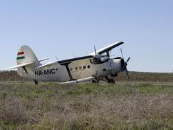 Vista de la avioneta cargada con más de mil kilos de hachís que ha sido interceptada en la provincia de Ciudad Real y cuyos dos pilotos, de nacionalidad mexicana, han sido detenidos. / Efe