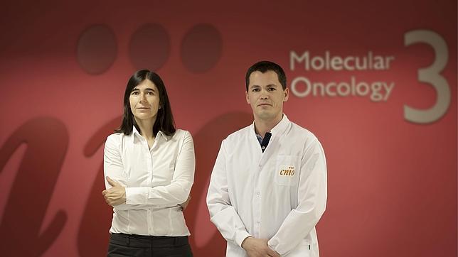 Prueban con éxito la primera terapia génica contra el envejecimiento