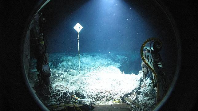 Vida extrema en los volcanes submarinos