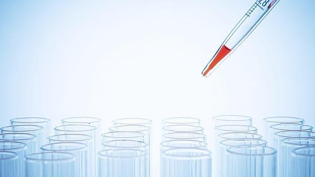 Prueban con éxito una vacuna contra el virus del Nipah