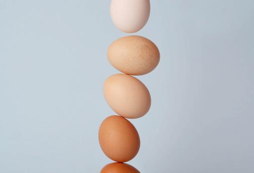 El huevo se considera un alimento fundamental para los humanos desde tiempos inmemoriales