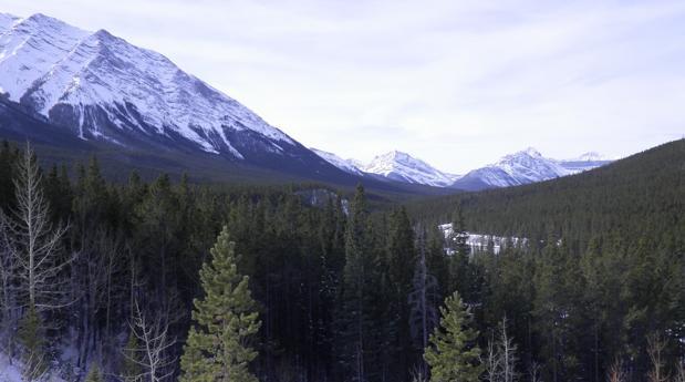 Aspecto actual de la zona donde hubo un corredor desejado por el hielo hace unos 13.000 años