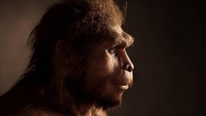 Inventó el lenguaje el Homo erectus hace 1,9 millones de años?