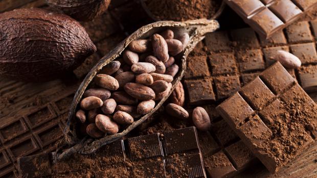 El chocolate proviene del árbol del cacao