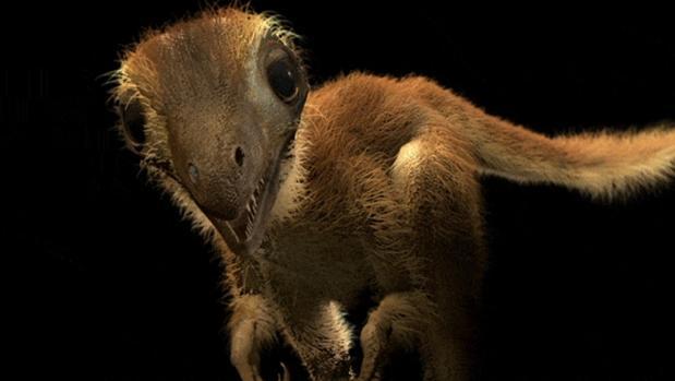 Representación de una cría de «Tyrannosaurus rex». Eran tan grandes como un pavo, pero, a los 20 años, estos animales alcanzaban los 8.000 kilogramos de peso y una longitud de 12 metros