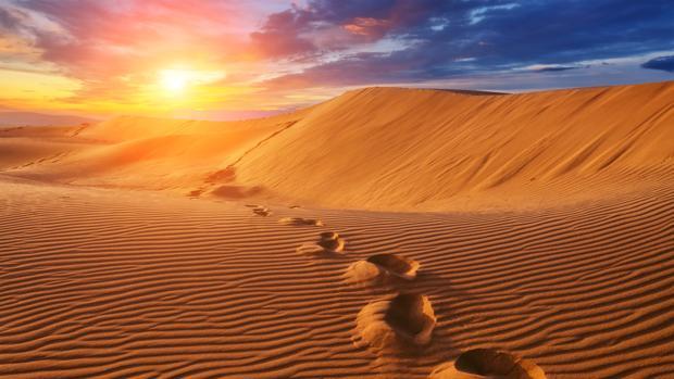 Deberíamos convertir el desierto del Sahara en una inmensa planta solar?