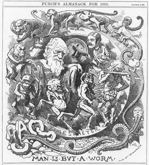 La caricatura El hombre no es más que un gusano de la teoría de Darwin en la revista Punch de 1882
