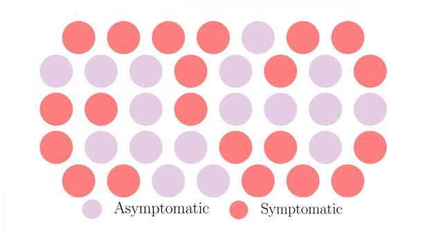 Los investigadores de la Universidad de Princeton analizaron las estrategias evolutivas que emplean los patógenos para propagarse a través de una población y descubrieron que la transmisión sin síntomas, una táctica empleada por el virus que causa COVID-19, puede ser una estrategia exitosa para propagarse a través de la población - Chadi Saad-Roy, Universidad de Princeton / Vídeo: La propagación silenciosa de los casos asintomáticos de COVID19 - ABC Multimedia La propagación «silenciosa» del Covid-19: ¿por qué el coronavirus se expande sin síntomas?