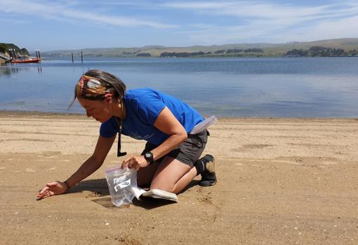 La profesora Ana Vola-Concejo recogiendo muestras en la Bahía de Tomales, California