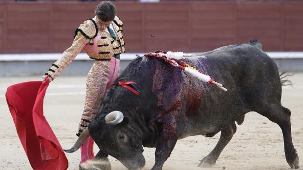 Fernando Robleño dejó buenos muletazos