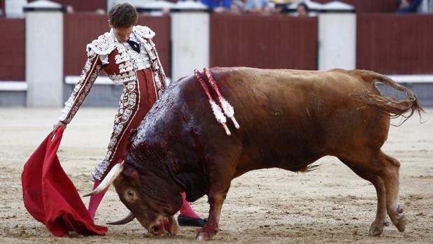 Ginés Marín, en un sentido muletazo al toro «Poeta»