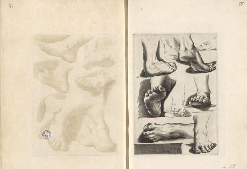 Scuola perfetta per imparare a disegnare, Roma, Pietro Stefanoni (P.S.F.), [primera edición h. 1609-14], edición de mediados del siglo XVII AGOSTINO CARRACCI (1557-1602) y otros LUCA CIAMBERLANO (act. 1599-1641) y otros (grabador) PIETRO STEFANONI (1557-h. 1642) (editor) Frontispicio, 49 estampas (buril)