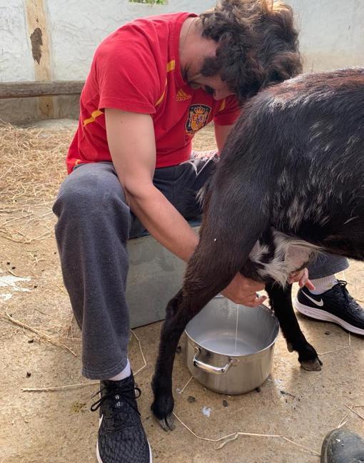 Una foto de Morante cada día - Página 6 Morante-cabra-korH-U406447589717aF-510x649@abc