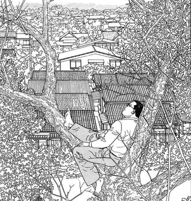 'El caminante' de Jiro Taniguchi, subido en un árbol para coger perspectiva