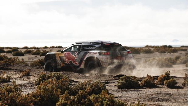Loeb, durante la octava etapa