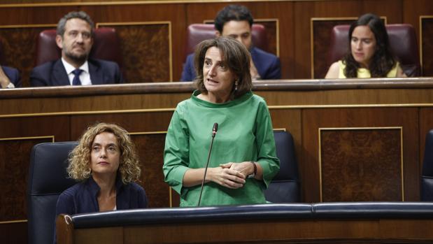 La ministra de Transición Ecológica, Teresa Ribera, en una reciente comparecencia en el Congreso