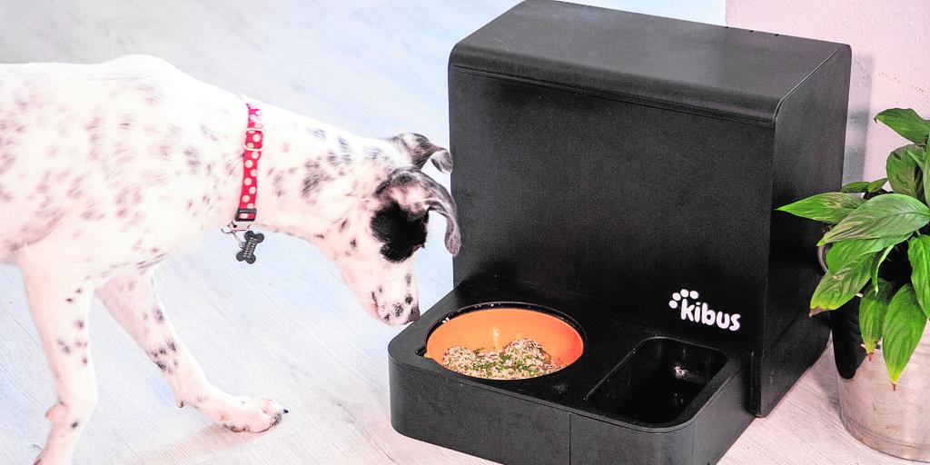 Mascotas, la innovación se vuelca en un negocio bestial