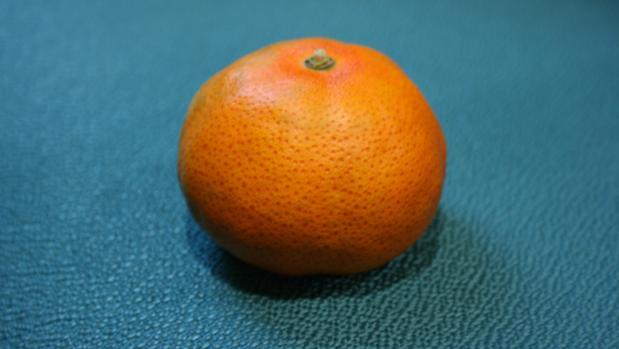 Mandarina de la variedad «Early pride»