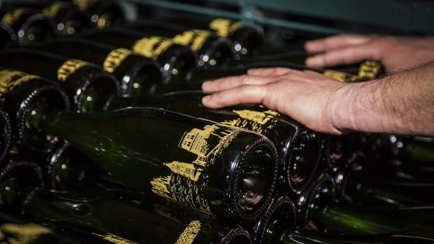 La firma aragonesa produce anualmente medio millón de botellas de cava, y exporta el 60% de ellas