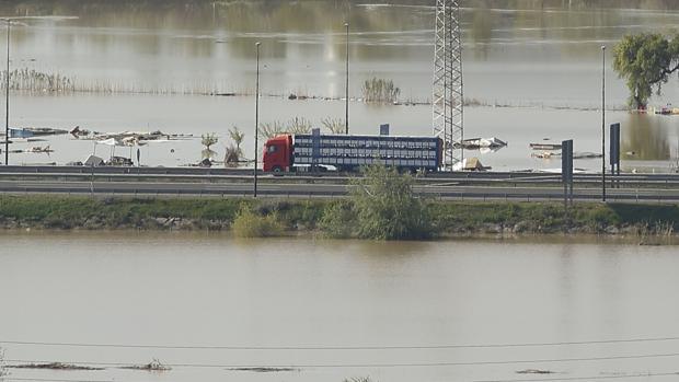 Un camión circula por una carretera totalmente rodeada por las aguas desbordadas del Ebro