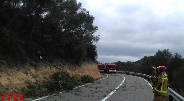 Dotacioens de los bomberos trabajando en el lugar del accidente