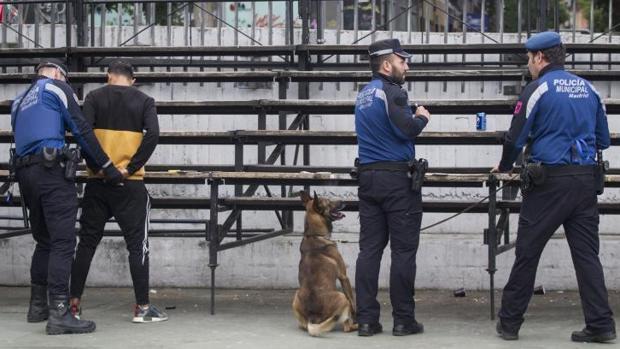 Agentes recorren el barrio con canes expertos en la detección de sustancias estupefacientes