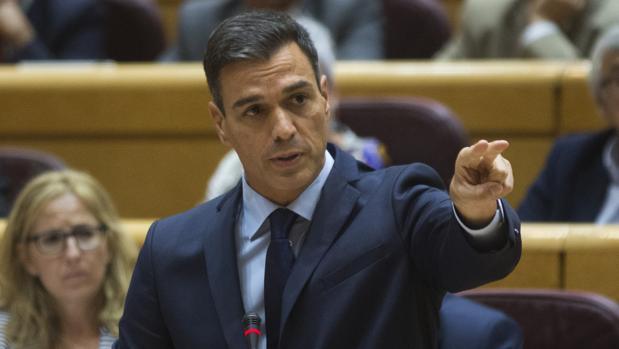 Pedro Sánchez comparece en el Senado durante la sesión de control al Gobierno