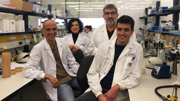 De izquierda a derecha, los investigadores Ivan Erill, Pilar Cortés, Jordi Barbé i Miquel Sánchez-Osuna.