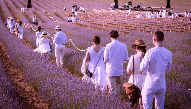 Es «una experiencia única e irrepetible, ya que a los pocos días las flores desaparecen», dice la directora del festival, Natacha Watine