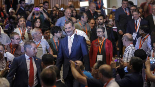 Imagen del Rey a su llegada al Congreso que se celebra en Valencia