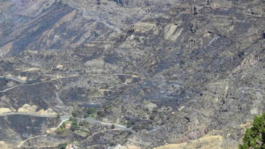 Gran Canaria procede a la evacuación de Cruz de Tejeda, el Rincón y el Parador por un incendio