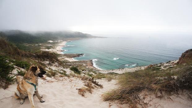 Vista desde la duna rampante de Monte Branco