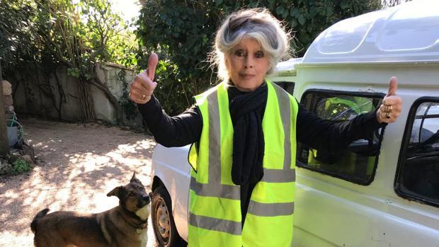 Brigitte Bardot posa con un chaleco amarillo, símbolo de las últimas protestas contra Emmanuel Macron