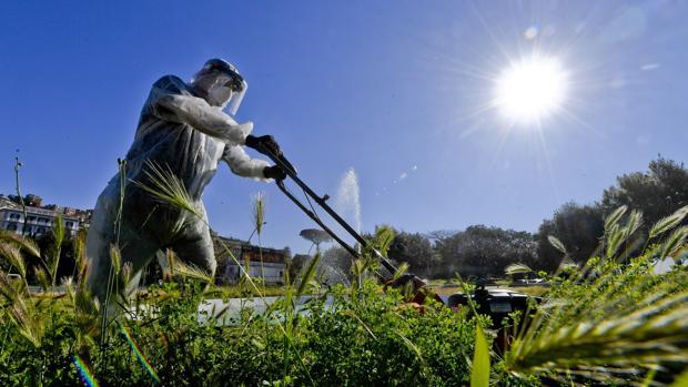 Italia regulariza cientos de miles de inmigrantes, empleados en el campo y en el trabajo doméstico