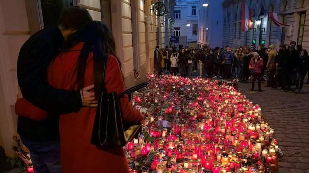 Austria anuncia una lucha sin cuartel contra el «islam político»