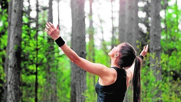 El contacto directo con la naturaleza reduce el estrés