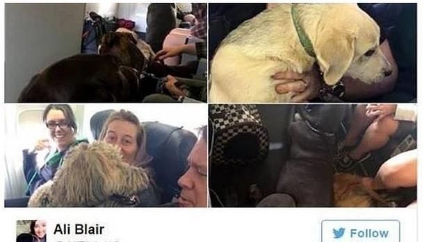 Los pasajeros compartieron fotos de este especial vuelo