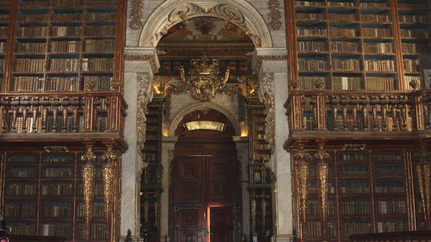 La colonia de murciélagos de la Biblioteca de Coimbra está integrada por ejemplares de dos especies