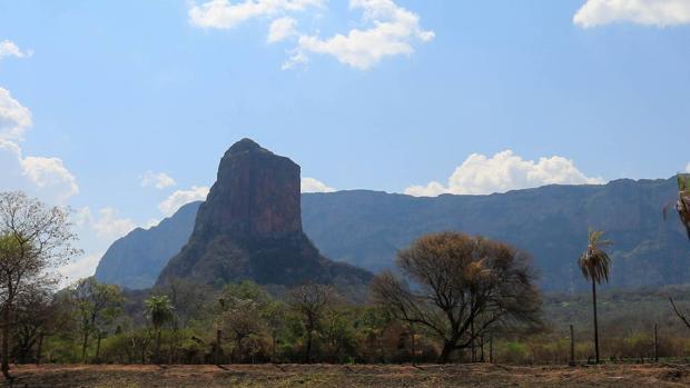 Los incendios en la Chiquitania boliviana amenazan a más de 1.200 especies