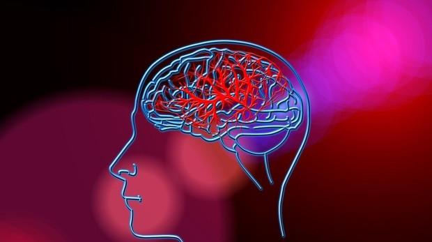Ictus y Álzhéimer enfermedades que causan mayor número de muertes de carácter neurológico.