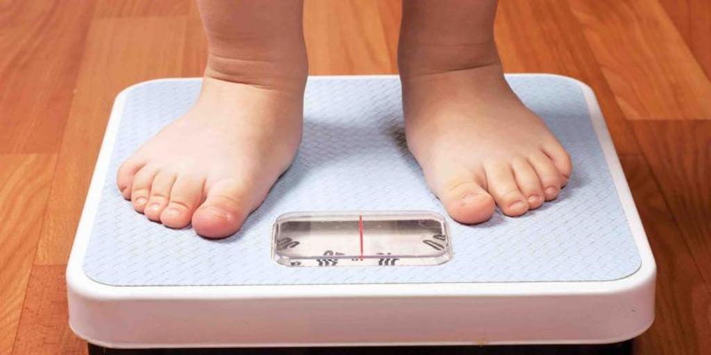 Descubren cómo la grasa marrón protege de la obesidad y la diabetes 2