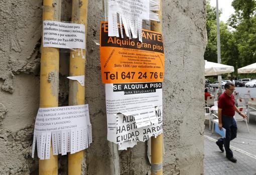 Los Barrios Mas Caros Y Los Mas Baratos Para Alquilar Piso En Sevilla
